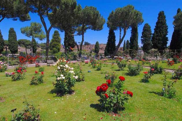Roseto Comunale: Rome's Rose Garden